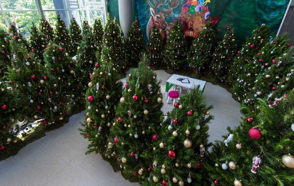 05/06 - Santa's Shaped Christmas Tree Farm €� Radford Collegians' Association